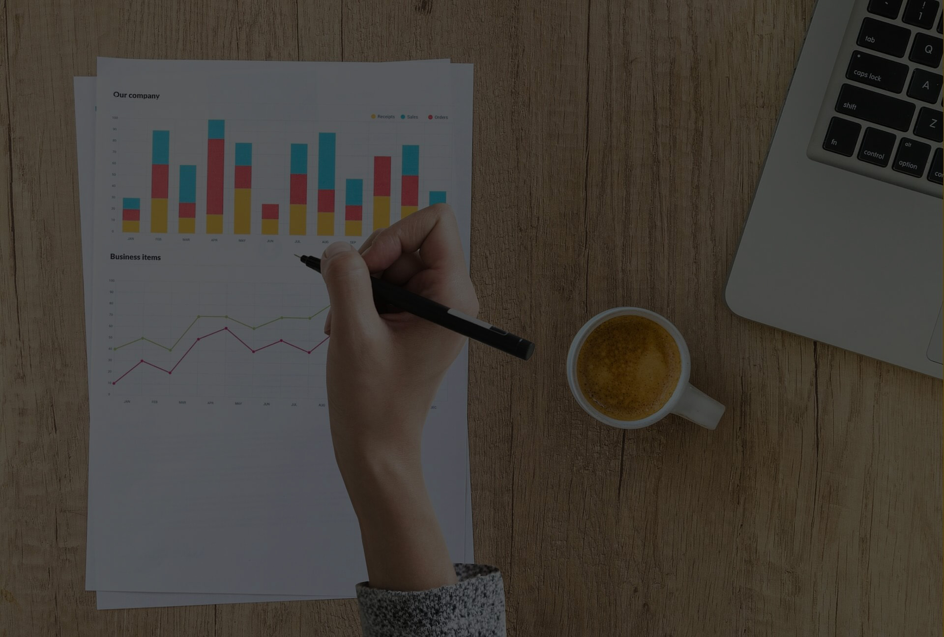 business portfolio management in usa